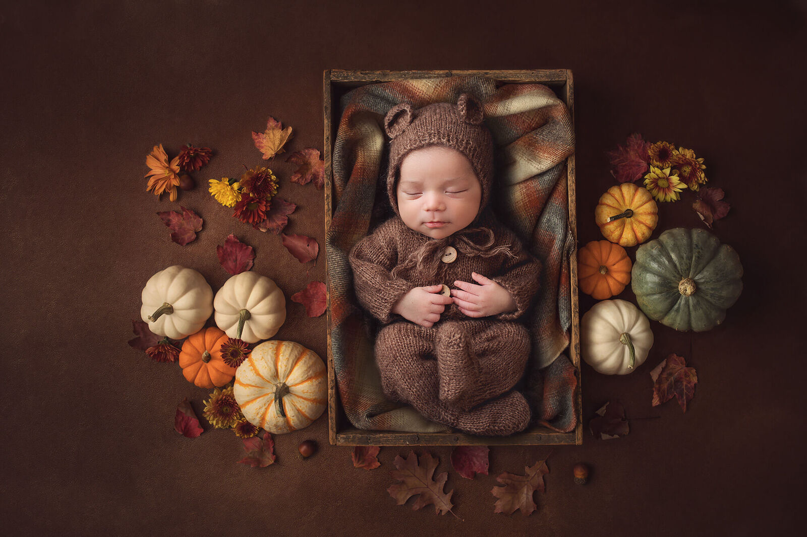 Newborn baby boy wearing a bear romper and surrounded by pumpkins for fall