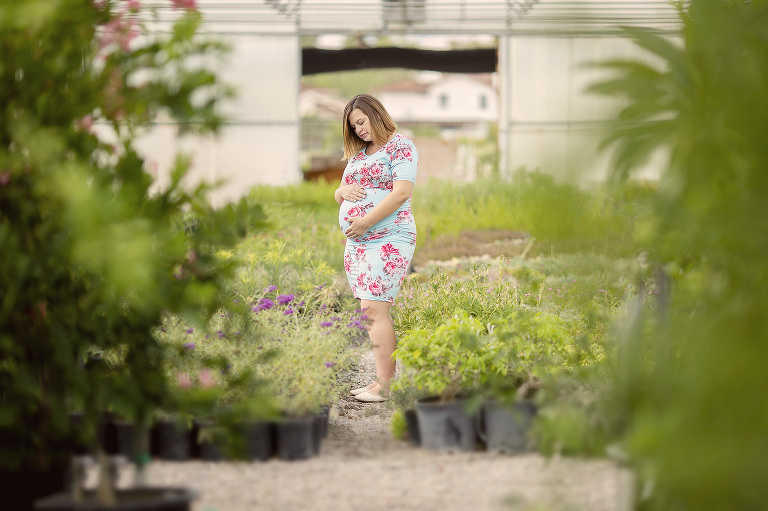 A pregnant mom cuddles her belly amongst rows of flowers and plants during her maternity session at a local Tucson nursery