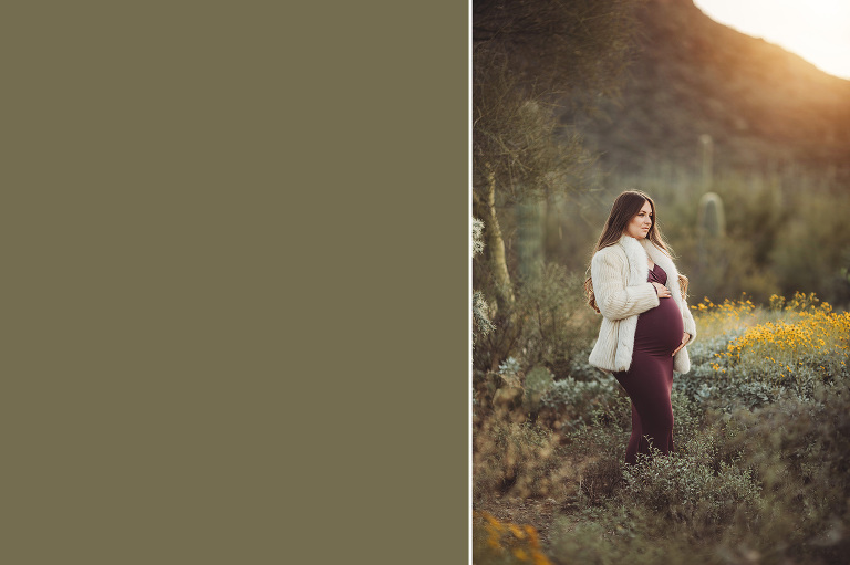 Mom-to-be Anica poses amongst desert fauna with mountains and a glowing sunrise over her shoulder during her maternity session in Tucson